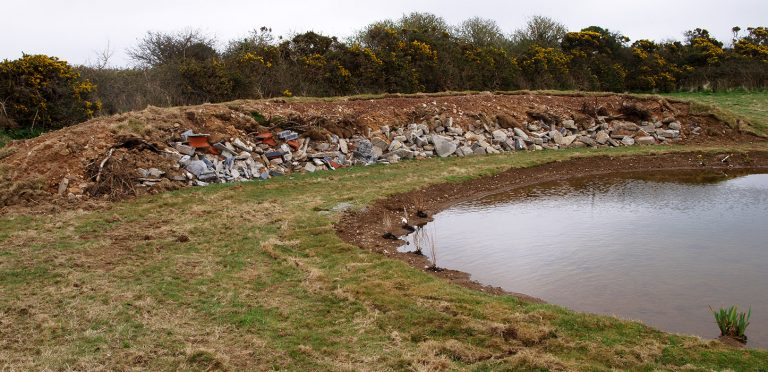 CEC improve biodiversity and habitats on the Met Office Weather Station site in Kehelland, Camborne