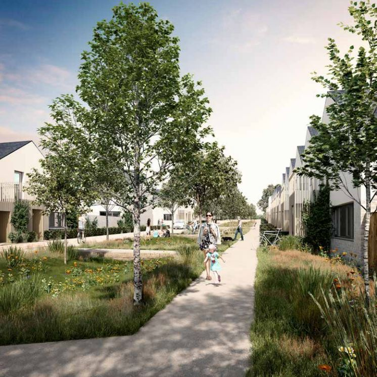 Green Infrastructure in a housing development (image credit Building with Nature)