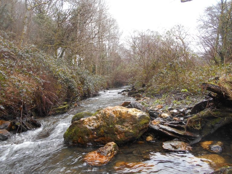 River Valency - upstream from Boscastle